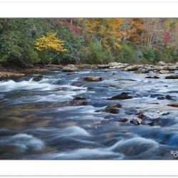AD0518: Chattooga National Wild and Scenic River, Sumter Nationa