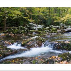 AD0286: Big Creek, Great Smoky Mountains National Park, TN, Autu