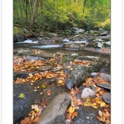 AD0288: Big Creek, Great Smoky Mountains National Park, TN, Autu