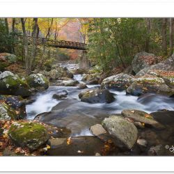 AD0377: Foot bridge over Lynn Camp Prong, Great Smoky Mountains