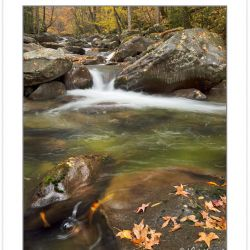 AD0685: Cosby Creek, Great Smoky Mountains National Park, TN, Au
