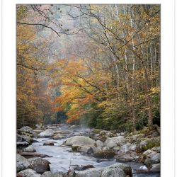 AD0691: Big Creek, Great Smoky Mountains National Park, TN, Autu