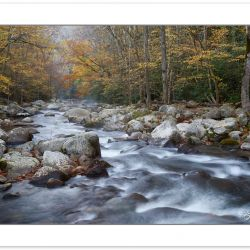AD0692: Big Creek, Great Smoky Mountains National Park, TN, Autu