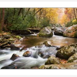 Big Creek, Great Smoky Mountains National Park, TN