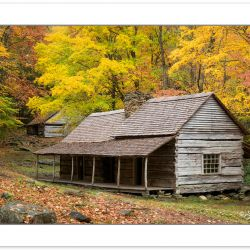 "AD0773: Noah ""Bud"" Ogle Cabin, Great Smoky Mountains National Pa"