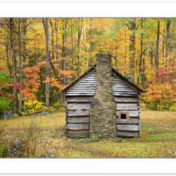 AD0781: Ephraim Bales cabin, Great Smoky Mountains National Park