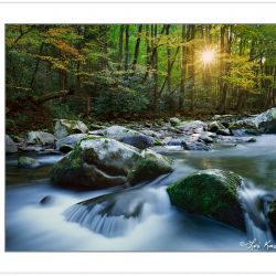 AL0140: Early autumn along the Little River at Sunrise, Elkmont
