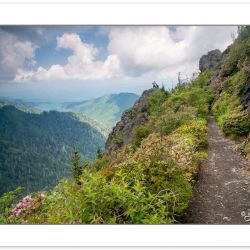 RD0154: Hikers on Charlie's Bunion, Great Smoky Mountains Nation