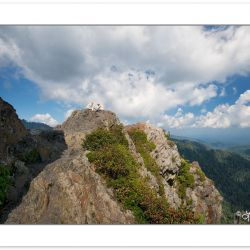SD0128: Hikers on Charlie's Bunion, Great Smoky Mountains Nation