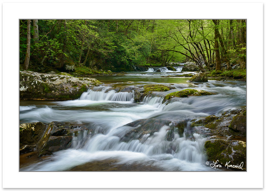 Middle Prong Little River, Great Smoky Mountains National Park,
