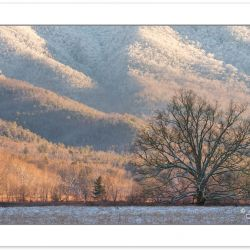 WD0376: Snow blankets the mountains in Cades Cove, Great Smoky M