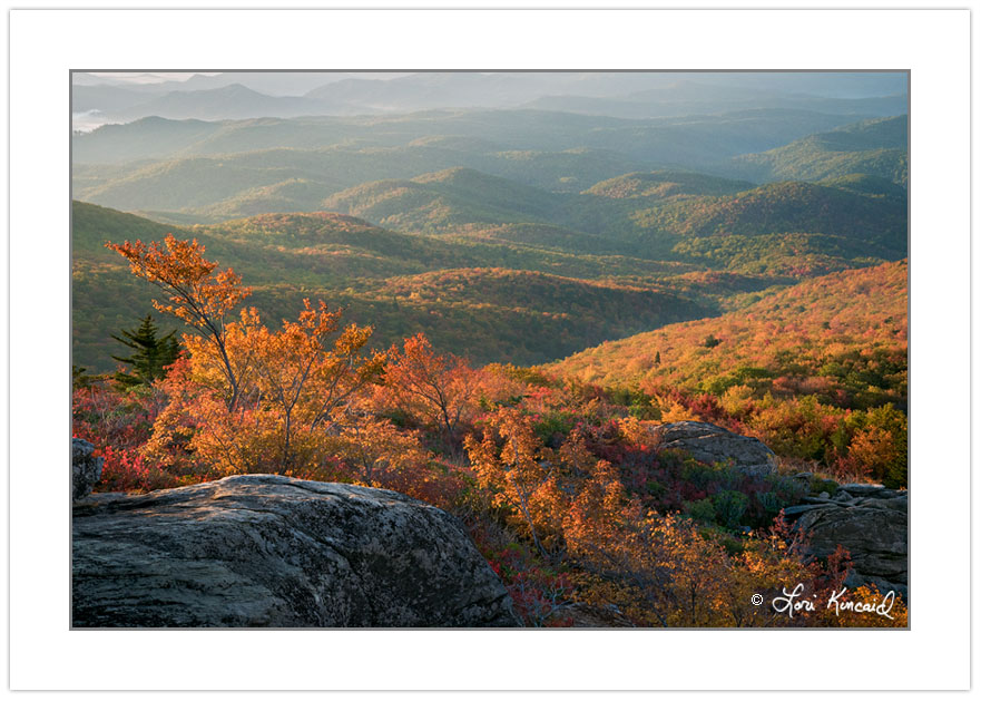 AD0344: Sunrise view from Rough Ridge on the Tanawha Trail, Gran