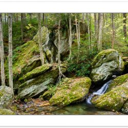 AD0716: Cascade on Shanty Spring Branch, Grandfather Mountain St