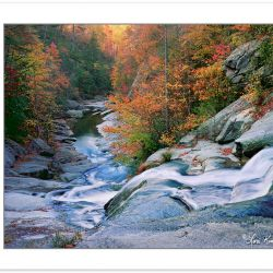 AL0176: Lower waterfall on Gragg Prong, Pisgah National Forest,