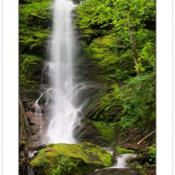 SD0220: Waterfall on Little Fall Branch, Pisgah National Forest,