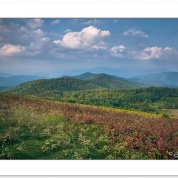 SD0415: Max Patch Bald, Pisgah National Forest, NC, September