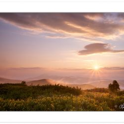 Sunrise view from Black Balsam Knob, Pisgah National Forest, NC,