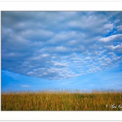 SL0142: Altocumulus clouds over Max Patch Mountain, Pisgah Natio