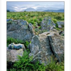 SL0242: Rock outcrop on Round Bald, Roan Highlands, Tennessee-No
