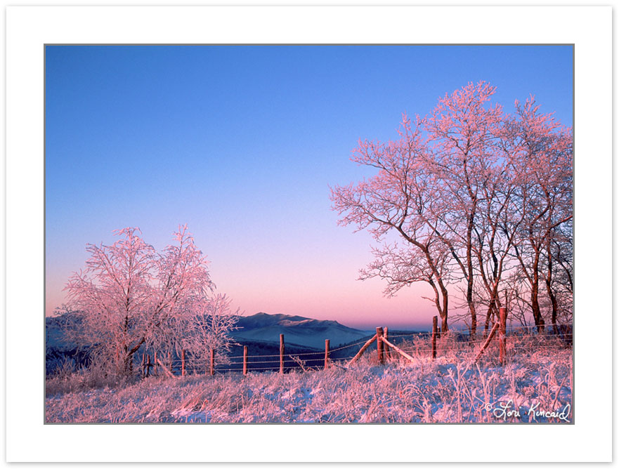 W00101:  Winter Dawn along the NC-TN state line with the Great S