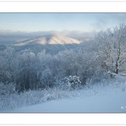 WD0226: First Light on Round Mountain in Cherokee National Fores