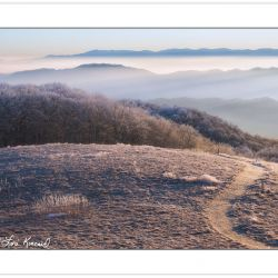 WD0258: Appalachian Trail at Max Patch, Pisgah National Forest,