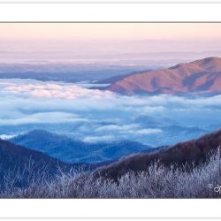 WD0285: View from Max Patch in Pisgah National Forest into Tenne