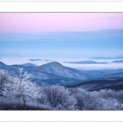 WD0287: Winter view at dawn from Max Patch Mountain, Pisgah Nati