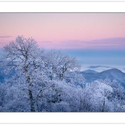 WD0290: Winter view at dawn from Max Patch Mountain, Pisgah Nati