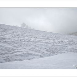 WD0386: Max Patch, Pisgah National Forest, NC, winter
