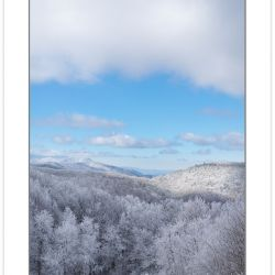 WD0386: Bald Mountains meadow with Cherokee National Forest in t