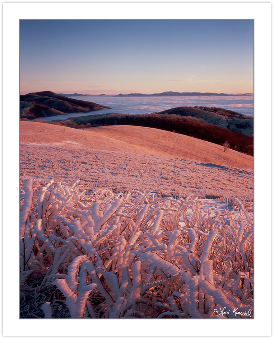 WL0107: Winter view at dawn from Max Patch Mountain, Pisgah National Forest, NC