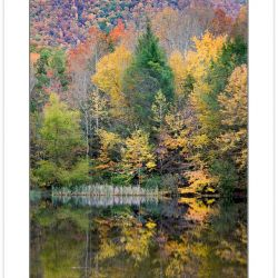 AD0222: Autumn reflection, Boundary Lake, Cherokee National Fore