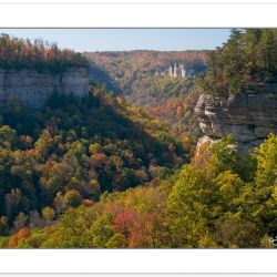 Pogue Creek State Natural Area, Tennessee, Autumn