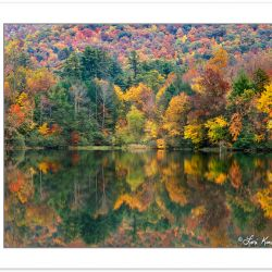 AL0192: Autumn foliage reflected on Boundary Lake, Cherokee Nati