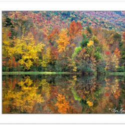 AL0196: Autumn foliage reflected on Boundary Lake, Cherokee Nati