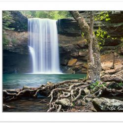 SL0380: Lower Greeter Falls, Savage Gulf State Natural Area, Sou